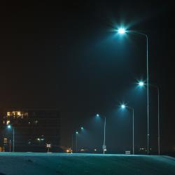 groningen seaports zet verder in op vogelvriendelijke led verlichting